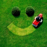 Benefits of Healthy Lawns