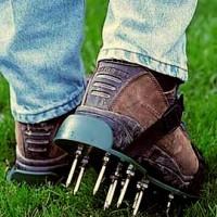 Comparing Lawn Aerators