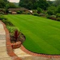 perfect cut lawn