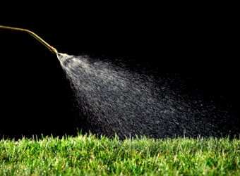 Future of Lawn Care Pesticides